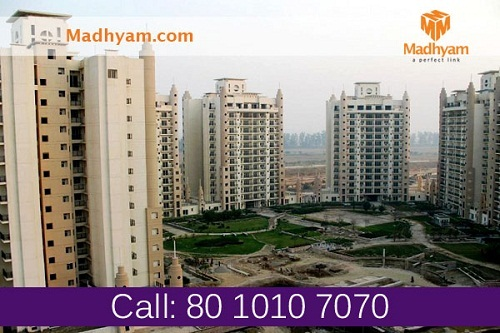 greater noida real estate