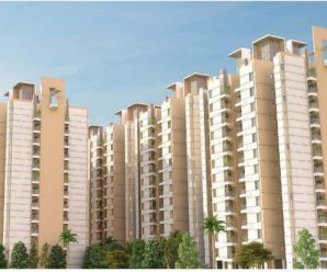 affordable homes gurgaon